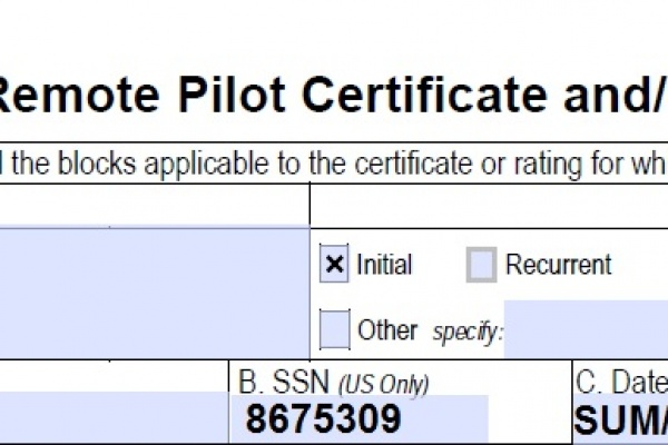 FIlled out FAA Form 8710-13